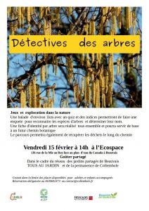 détective des arbres