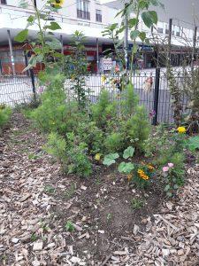 Jardinage au jardin de la Tour @ Jardin de la Tour