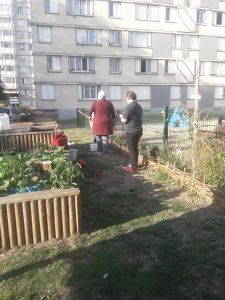 Goûter compost d'automne @ Site de compostage St Lucien